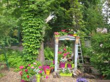 Сотрудники СибБС участвовали в Международной научно-практической конференции &laquoМалораспространённые декоративные растения в ботанических садах&raquo