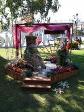 В сентябре Сибирский ботанический сад принял участие в Фестивале цветочного и ландшафтного искусства