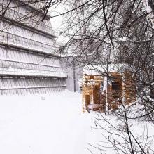 Потеряли «Гиперкуб»? Ищите его в Сибирском ботаническом саду!